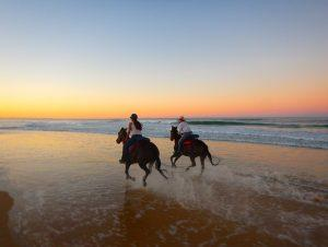 Horse riding Rainbow Beach